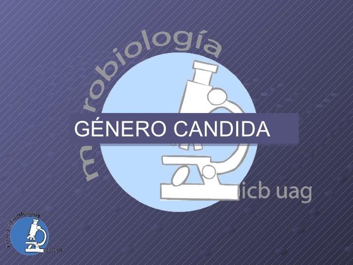 GÉNERO CANDIDA