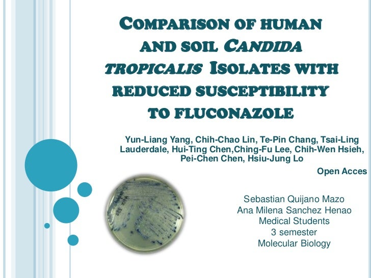 COMPARISON OF HUMAN   AND SOIL CANDIDATROPICALIS ISOLATES WITHREDUCED SUSCEPTIBILITY   TO FLUCONAZOLE  Yun-Liang Yang, Chi...