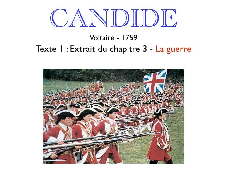 Essays On Candide