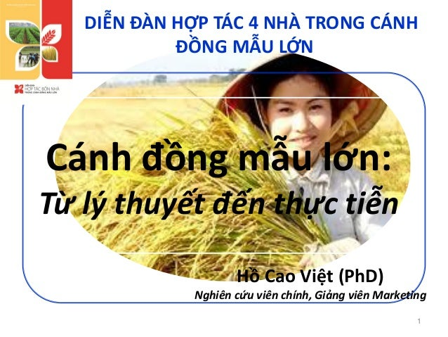 Large scale Rice farming in Mekong River Delta
