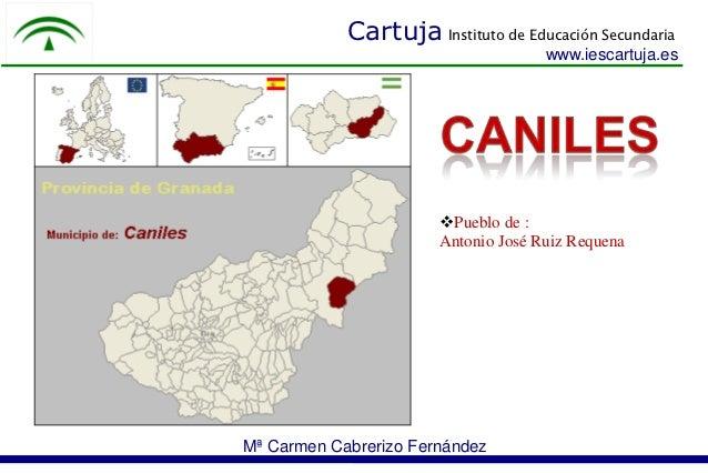 Cartuja Instituto de Educación Secundaria                                     www.iescartuja.es                       Pue...