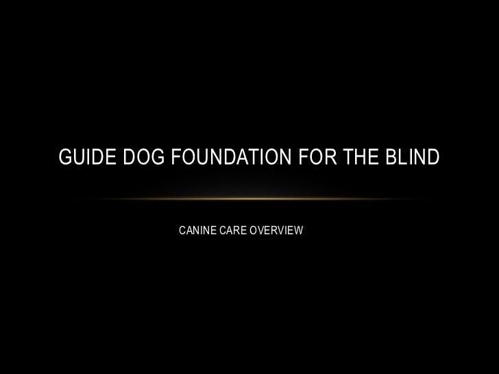 GUIDE DOG FOUNDATION FOR THE BLIND          CANINE CARE OVERVIEW
