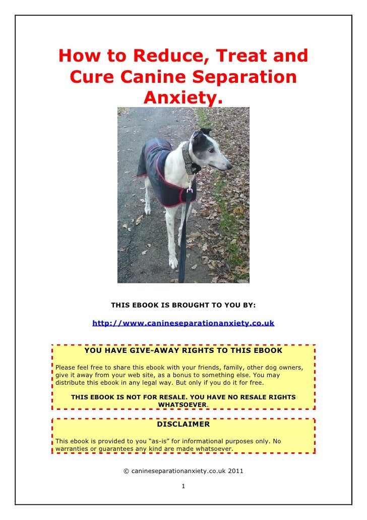 How to Reduce, Treat and Cure Canine Separation        Anxiety.                  THIS EBOOK IS BROUGHT TO YOU BY:         ...