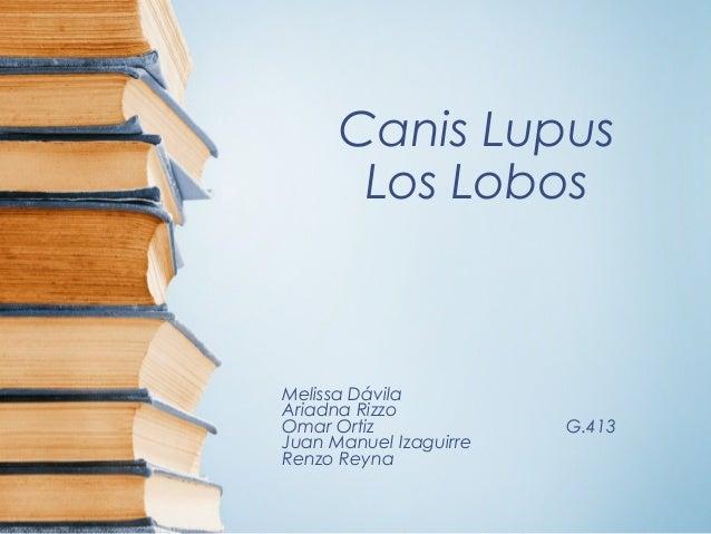 Canis Lupus Los Lobos Melissa Dávila Ariadna Rizzo Omar Ortiz G.413 Juan Manuel Izaguirre Renzo Reyna