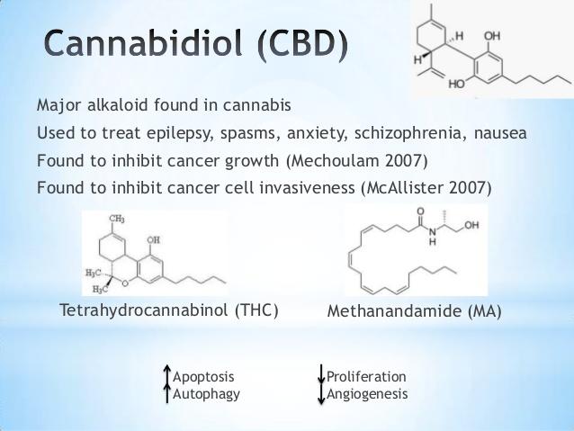 Cannabidiol Vape Oil Info