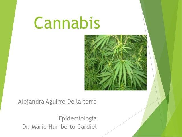 CannabisAlejandra Aguirre De la torre              Epidemiología Dr. Mario Humberto Cardiel