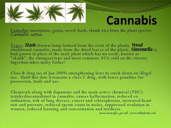 Cannabis  (marijuana, ganja, weed, hash, skunk etc) from the plant species  Cannabis sativa .  Types ;  Hash  (brown lump ...