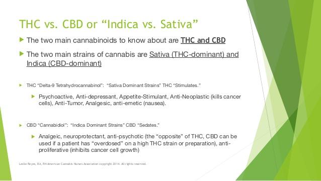Buy Cannabinoid Abuse
