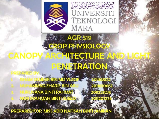 AGR 519                CROP PHYSIOLOGYCANOPY ARCHITECTURE AND LIGHT        PENETRATIONPREPARED BY:1. ISHAM SAMEER BIN MD Y...
