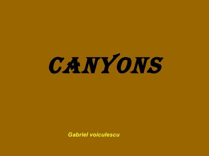 Canyons Gabriel voiculescu