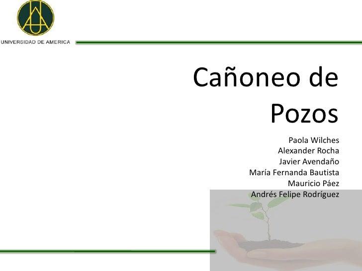 Cañoneo de     Pozos              Paola Wilches          Alexander Rocha           Javier Avendaño   María Fernanda Bautis...