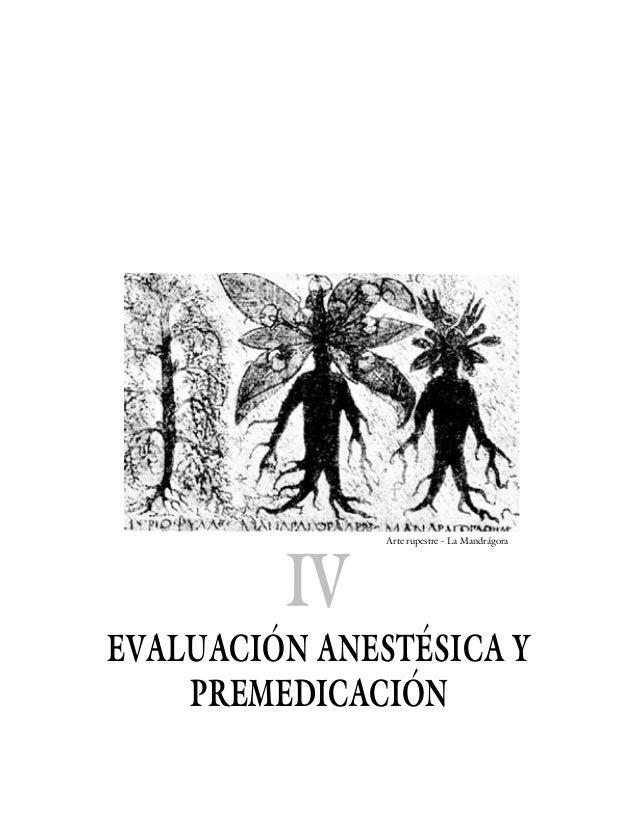 IV               Arte rupestre - La MandrágoraEVALUACIÓN ANESTÉSICA Y    PREMEDICACIÓN