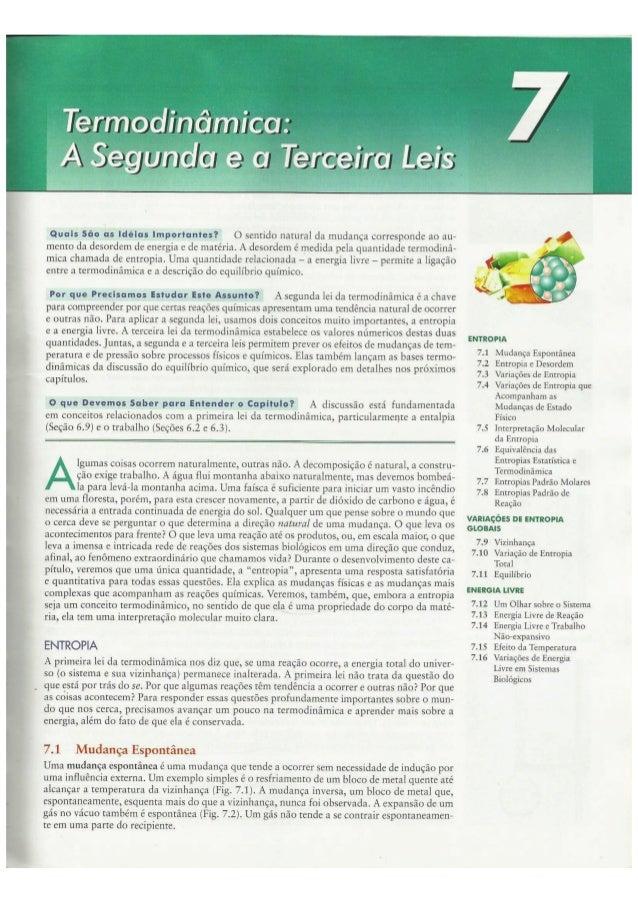 Cap07   termodinâmica a segunda e a terceira leis