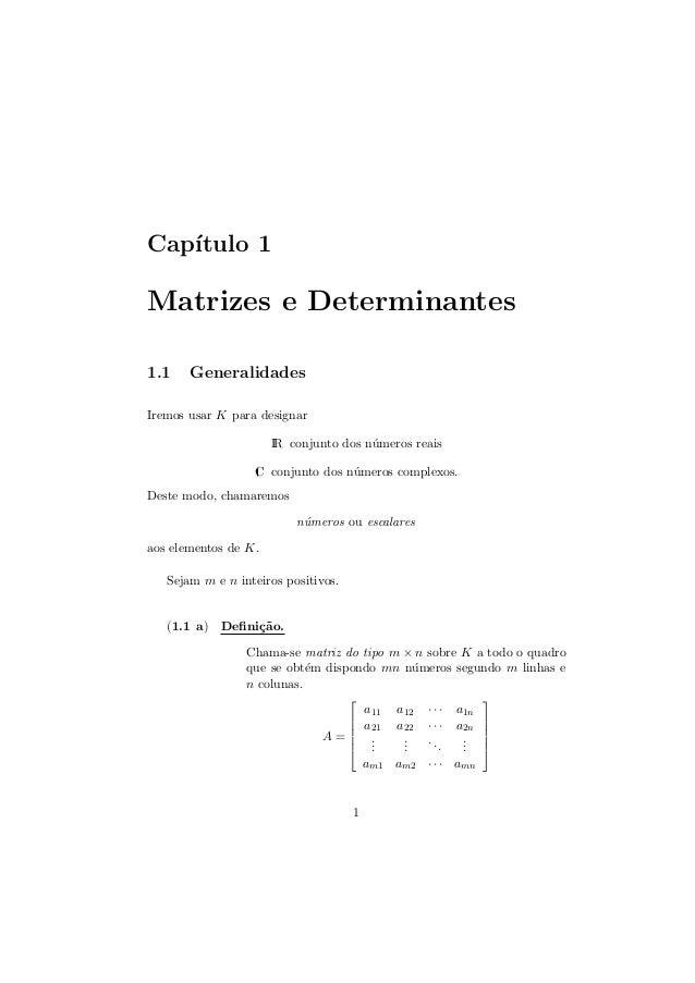 Cap´ ıtulo 1  Matrizes e Determinantes 1.1  Generalidades  Iremos usar K para designar IR conjunto dos n´meros reais u C c...