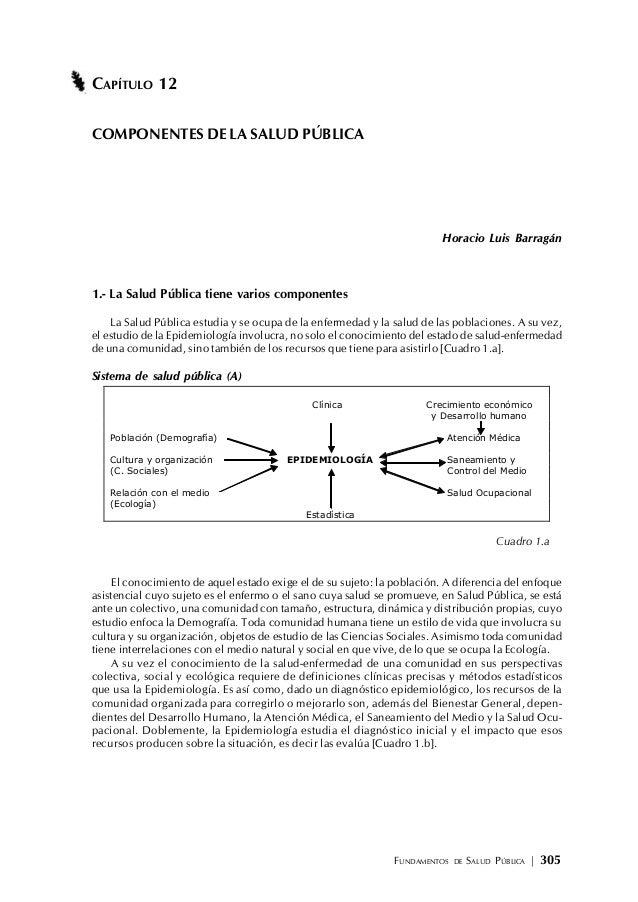 FUNDAMENTOS DE SALUD PÚBLICA | 305 CAPÍTULO 12 COMPONENTES DE LA SALUD PÚBLICA Horacio Luis Barragán 1.- La Salud Pública ...