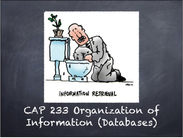 CAP 233 Organization ofInformation (Databases)