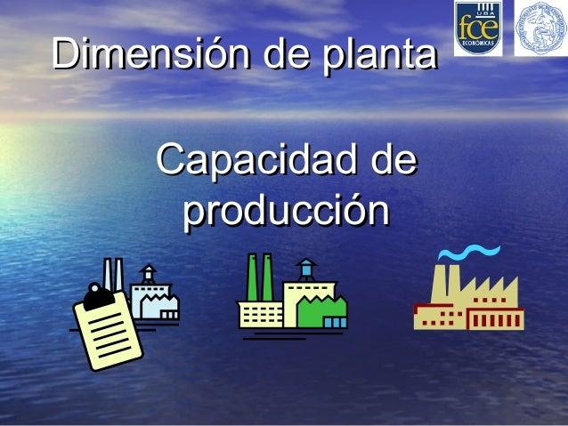 Dimensión de planta     Capacidad de      producción