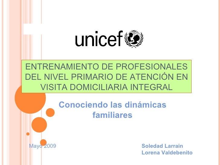 ENTRENAMIENTO DE PROFESIONALES DEL NIVEL PRIMARIO DE ATENCIÓN EN VISITA DOMICILIARIA INTEGRAL Conociendo las dinámicas fam...