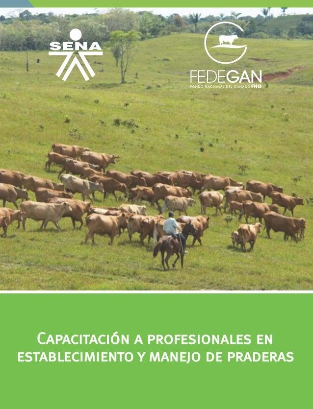 establecimiento y manejo de praderas Capacitación a profesionales en