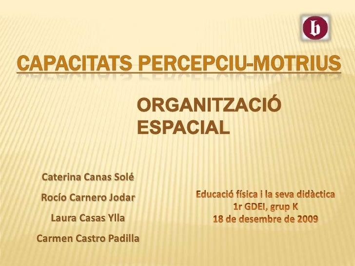 CAPACITATS PERCEPCIU-MOTRIUS<br />ORGANITZACIÓ ESPACIAL<br />Caterina CanasSolé<br />Rocío CarneroJodar<br />Laura Casas...