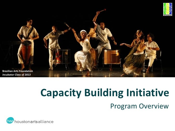 Capacity building initiative overview 2012 06