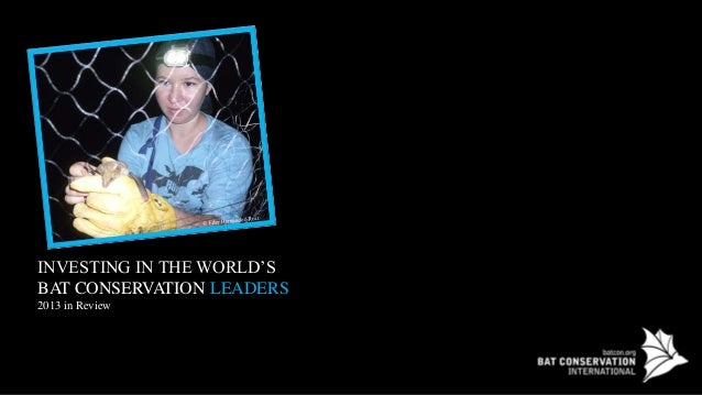 BCI: Investing in the World's Bat Conservation Leaders