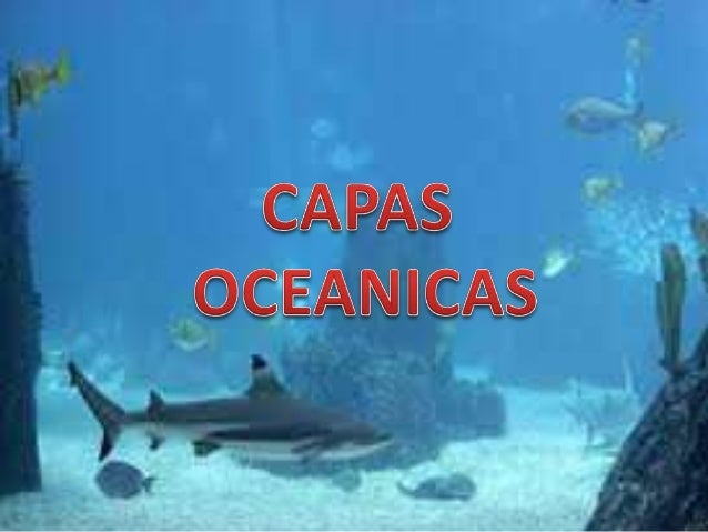 Capas oceanicas