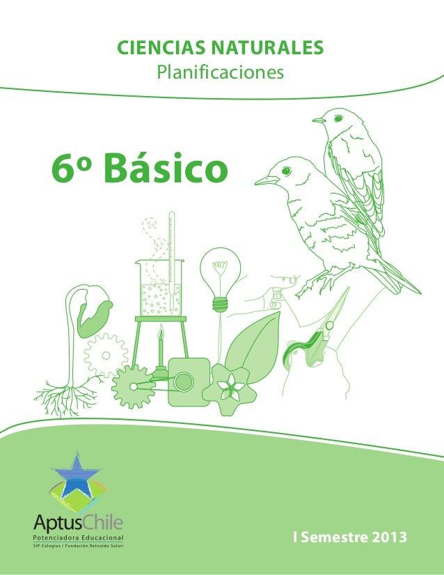 6º Básico I Semestre 2013 CIENCIAS NATURALES Planificaciones