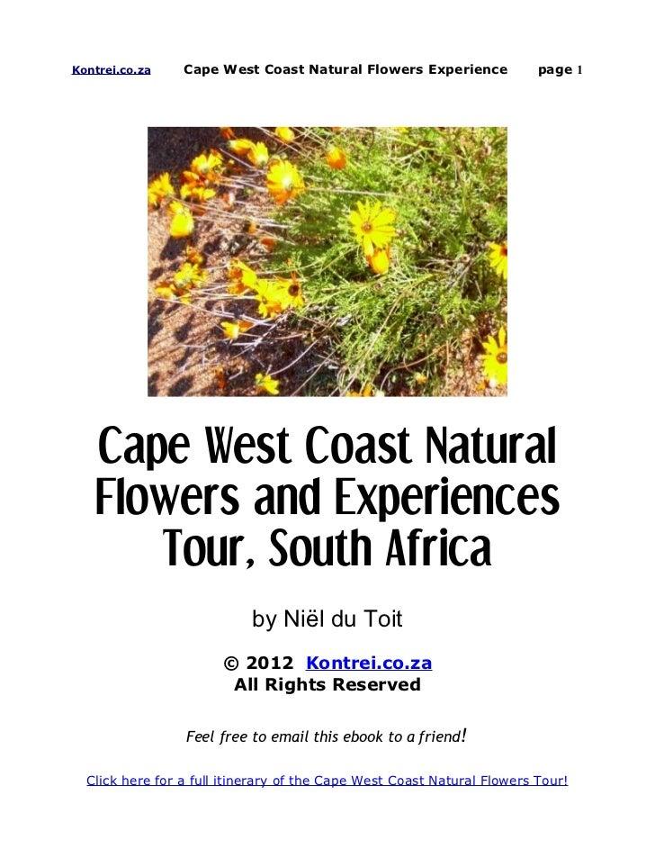 Kontrei.co.za    Cape West Coast Natural Flowers Experience              page 1   Cape West Coast Natural   Flowers and Ex...