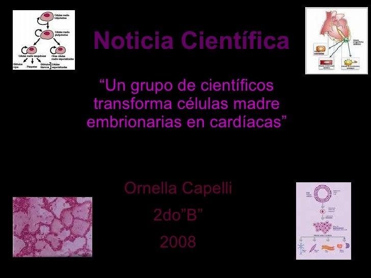"""Noticia Científica """" Un grupo de científicos transforma células madre embrionarias en cardíacas"""" Ornella Capelli 2do""""B"""" 2008"""