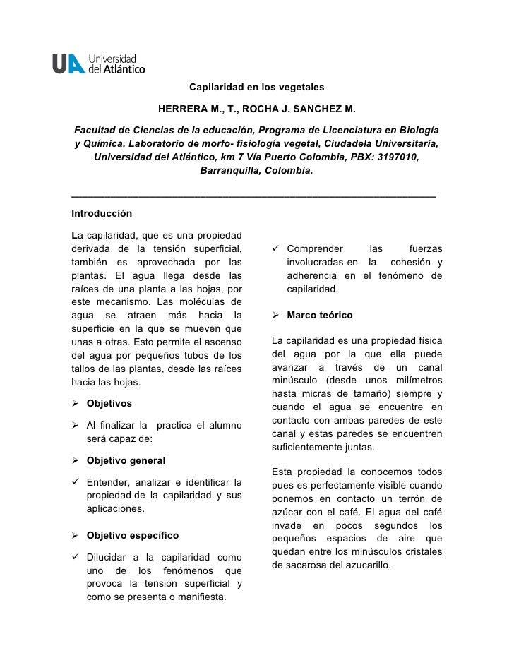 Capilaridad en los vegetales                   HERRERA M., T., ROCHA J. SANCHEZ M.Facultad de Ciencias de la educación, Pr...