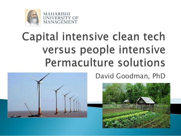 Capital Intensive Clean Tech and Micro-Financed Green Solutions: A Comparison