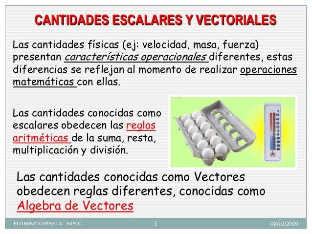 CANTIDADES ESCALARES Y VECTORIALES Las cantidades físicas (ej: velocidad, masa, fuerza) presentan características operacio...