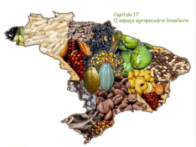 Capítulo 17 O espaço agropecuário brasileiro