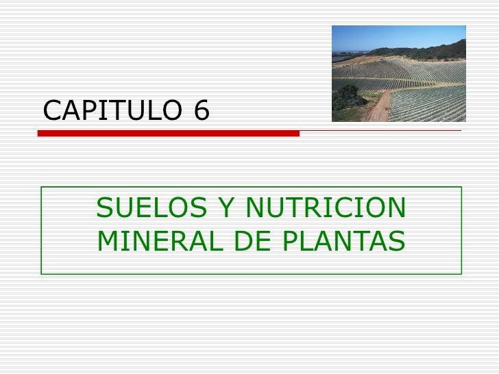 CAPITULO 6 SUELOS Y NUTRICION MINERAL DE PLANTAS