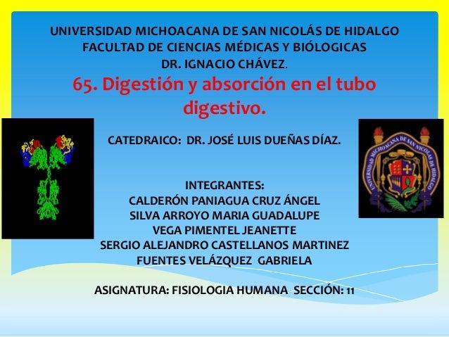UNIVERSIDAD MICHOACANA DE SAN NICOLÁS DE HIDALGO    FACULTAD DE CIENCIAS MÉDICAS Y BIÓLOGICAS               DR. IGNACIO CH...
