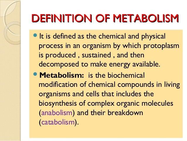 metabolisme definitie