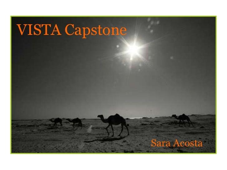 Sara Acosta VISTA Capstone