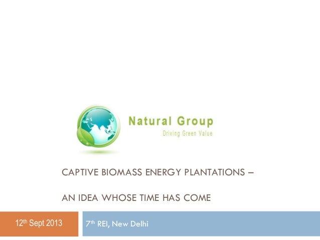 CAPTIVE BIOMASS ENERGY PLANTATIONS – AN IDEA WHOSE TIME HAS COME 12th Sept 2013  7th REI, New Delhi