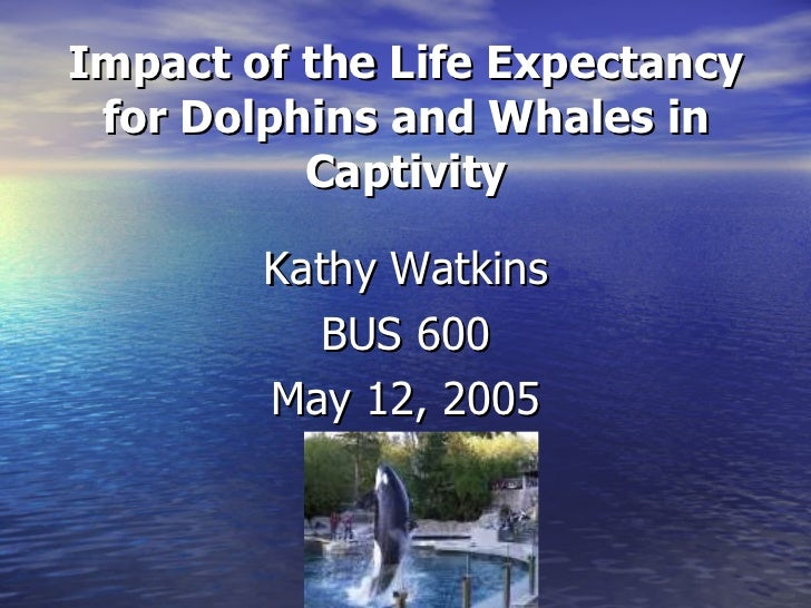 Captivity of dolphins and whales