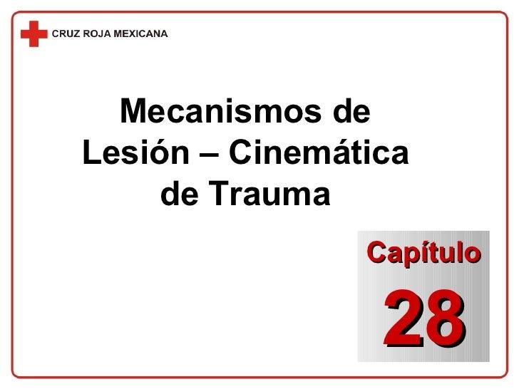 Mecanismos de Lesión – Cinemática de Trauma Capítulo 28