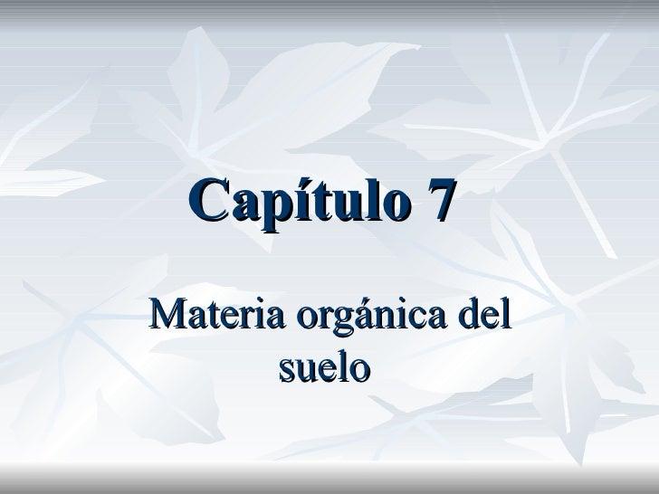 CapíTulo 7 3