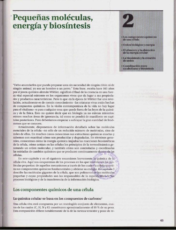 BIOLOGÍA CELULAR Y MOLECULAR. Capítulo 02   pequeñas moléculas, energía y biosíntesis