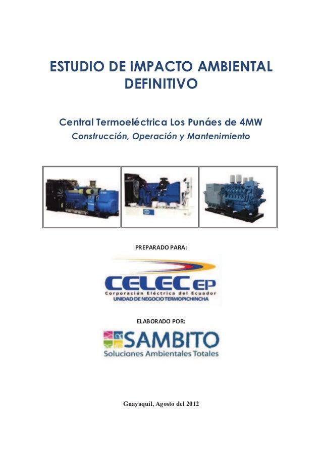 ESTUDIO DE IMPACTO AMBIENTAL          DEFINITIVO Central Termoeléctrica Los Punáes de 4MW   Construcción, Operación y Mant...