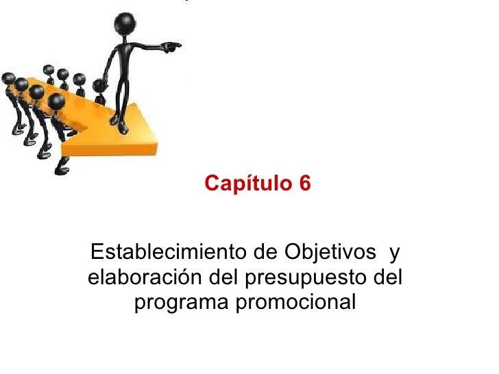6. Objetivos y presupuesto del programa promocional