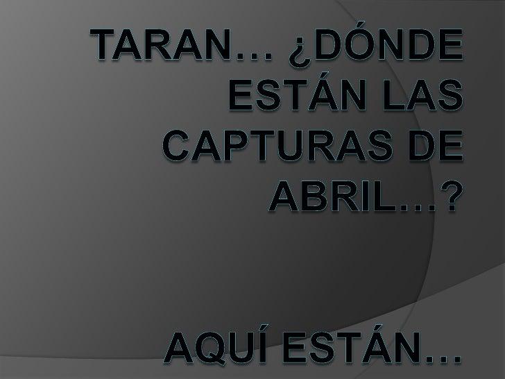 Taran… ¿Dónde están las capturas de abril…?Aquí están… <br />
