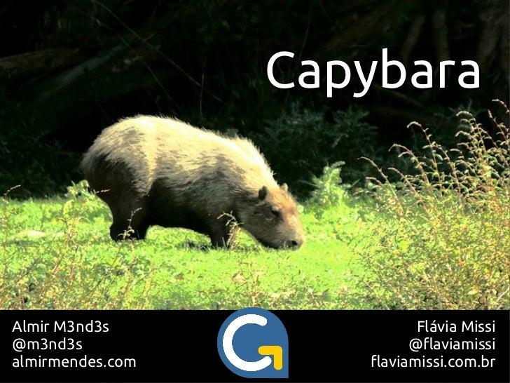 CapybaraAlmir M3nd3s                Flávia Missi@m3nd3s                    @flaviamissialmirmendes.com      flaviamissi.co...