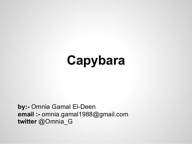 Capybaraby:- Omnia Gamal El-Deenemail :- omnia.gamal1988@gmail.comtwitter @Omnia_G