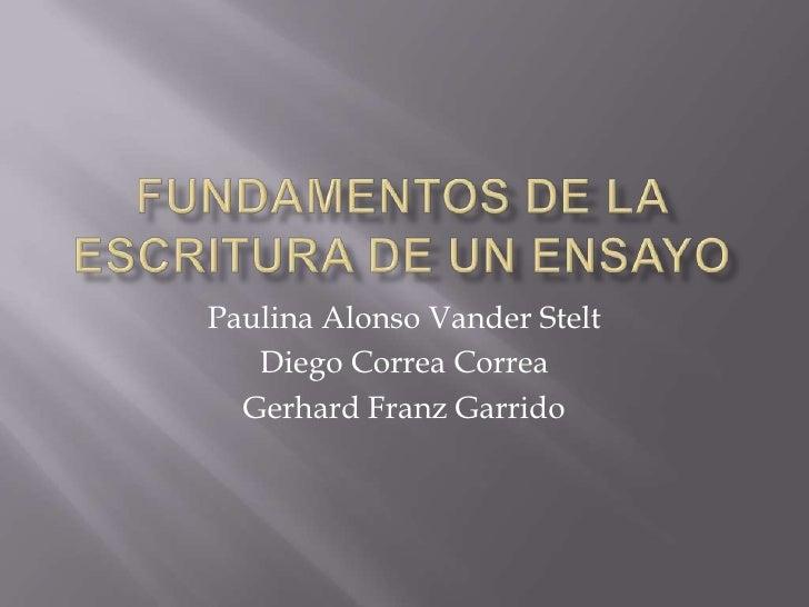 Fundamentos de la escritura de un ensayo<br />Paulina Alonso Vander Stelt<br />Diego Correa Correa<br />Gerhard Franz Garr...