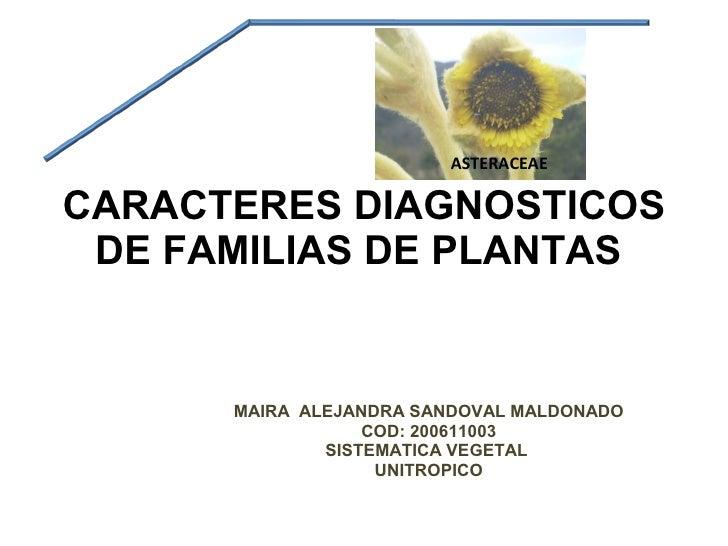 CARACTERES DIAGNOSTICOS DE FAMILIAS DE PLANTAS  MAIRA  ALEJANDRA SANDOVAL MALDONADO COD: 200611003 SISTEMATICA VEGETAL  UN...
